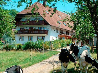 Fischerhof im Elztal - Ferienwohnung Talblick