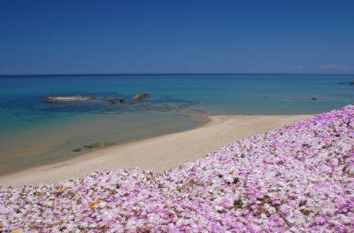 Sogno di Rena, nur 20 mt vom Strand